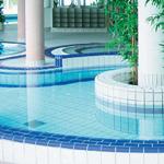 Клинкер и мозаика для бассейна