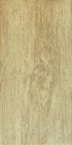 Керамогранит Мореное дерево 20х40