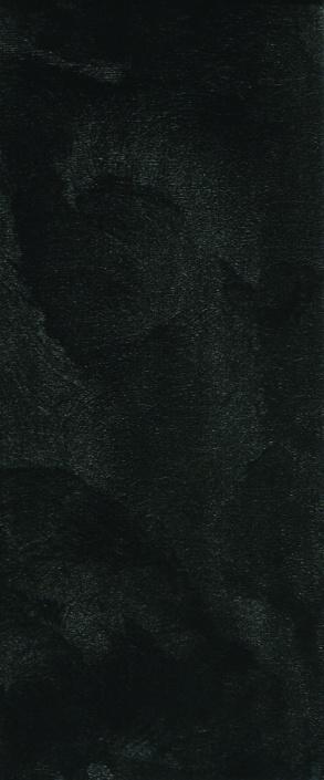 Настенная плитка Prime black wall 02 25х60