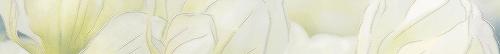 Бордюр   Rapsodia olive