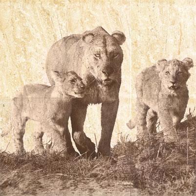 Панно Селлинг Львица со львятами 60х60