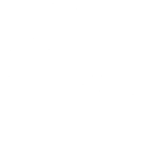 Моноколор белый КГ 01 40х40